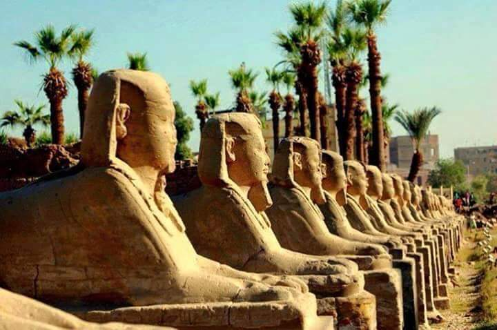 Day 3 – Sunday: Visit Luxor West And East Bank